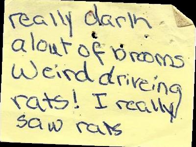 weird_driving_rats